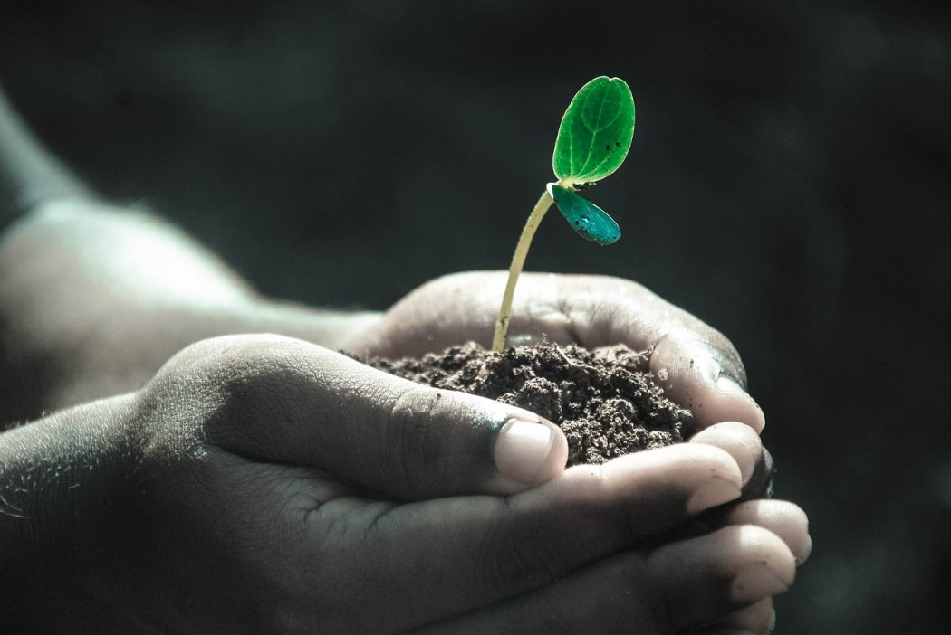 Great Leaders Start With Values - People Development Network